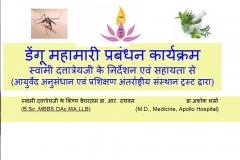 Dengue epidemic 2015 - 2